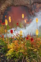 Hot strong coloured planting including Kniphofia 'Tetbury Torch', Achillea 'Walter Funke' and Achillea 'Terracotta' with volcano themed smoke, lava and ash, Eruption of Unhealed Anger, RHS Hampton Court Flower Show 2014