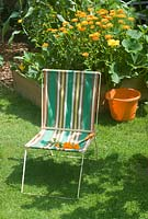 Vegetable bed with pumpkin, sweetcorn and calendula with vintage deck chair