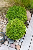 Buxus semperviens spheres, rounded pebbles, Stipa tenuissima with hard wood deck and gravel showing contrasting texture and shape