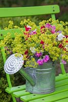 Floral display of Alchemilla mollis and Sweet peas in a watering can