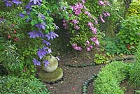 Clematis 'Elsa Spath' and 'Dorothy Tolver' growing on a rustic trellis in an English country garden, with bottle lined path and stone feature, Norfolk, UK, June