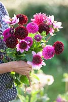 Gabrielle Reid holding a bunch of Dahlias