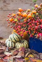 Autumnal display of various rose hips, gourds and hedera