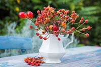 Display of various rose hips in an ornate white jug
