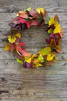 Autumnal leaf wreath made from a mixture of leaves, hanging against a wooden backdrop.