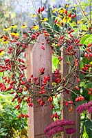 Rosehip wreath hanging on the edge of a wooden fence.