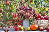 Jug of hydrangea seedheads, rosehip wreath and basket of harvested pears and apples.