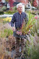 Man carrying crate of selected perennials and grasses at nursery.
