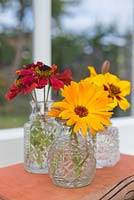 Floral display of Calendula officianalis 'Art Shades', Helenium and Tagetes 'Naughty Marietta' in small glass jars with a view to the garden