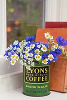 Floral display of Cornflower - Centaurea, Feverfew - Tanacetum parthenium and Anthriscus sylvestris in a vintage coffee tin, with a view through a window to the garden