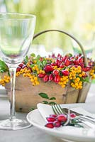 Rosa - Rose hips and Sorbus berries used as table place setting components