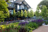Contemporary garden with repeated planting - including an avenue of Pyrus 'Chanticleer' with Nepeta 'Six Hills Giant'