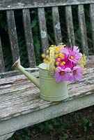 Cut garden flower arrangement - pink cosmos and fennel flowers in childs watering can