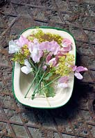 Cutting garden flowers - sweetpeas and alchemilla mollis in vintage enamel tin.