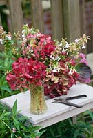 Cut garden flower arrangement - hydrangea flowerheads and stems of abelia in vintage cut glass vase