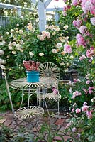 Seating area under pergola with climbing roses, metal garden table and chairs, Rosa 'Cornelia', Rosa 'Buff Beauty', Rosa 'Ghislaine de Féligonde' , sedum in blue pot, brick flooring