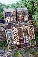 Homemade insect boxes made using dried flower heads and stems