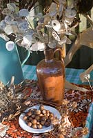 Dried flowers and seedheads for arranging - honesty and hazlenuts
