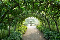 The apple tunnel with ripening fruit in the Kitchen Garden, Highgrove, September 2013.