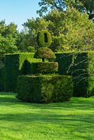 Topiary, The 'Lawn' Highgrove Garden, October 2013.