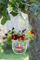 Glass jar lantern hung on tree decorated with Rubus -  blackberries, Foeniculum - fennel and Tropaeolum - nasturtium, candle in decorative gravel