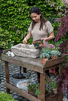 Practical step by step guide to planting a stone alpine trough with alpine plants. Alpine plants need good drainage, so cover the drainage holes first with crocks to prevent them becoming blocked and then cover with gravel to a depth of 2-3cm.