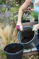 Planting a salvaged pot step by step. Fill with potting compost.