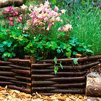 Low edging panels woven from lengths of willow or hazel. Natural look which blends well with planting of aquilegia.