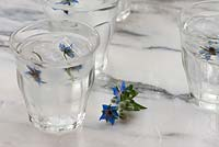 Borage flower ice cubes added to glasses of water.