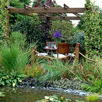 Wooden pergola covered in fragrant Trachelospermum jasminoides, beside pool edged in sage, hosta, astilbe and grasses. Dining area enclosed in evergreen shrubs.