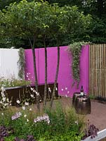 Calm retreat with white and pink walls and vertical fencing slats. A single Malus tree casts shade over bed of gaura, sanguisorba, mallow, heuchera and grasses.