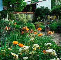 Walled, mediterranean garden with armillary sphere and beds of Papaver Turkish Delight, Rosa White Pet, foxtail lilies, iris, geum, tulip, cistus and asphodeline.