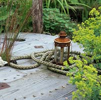On silvered, rescued timber cable reel sits rusting lantern in coil of rope, by frothy Alchemilla mollis.