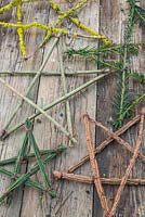 A variety of festive stars made from various tree and shrub cuttings. Yew, Spindle, Broom and Prunus with Lichen.