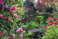 Bridge over pond with planting incuding Camellia japonica