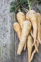 Storing Root Vegetables - A bunch of Parsnips on a wooden surface