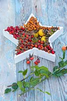A floral arrangement containing a variety of Rose hips placed inside a white star, accompanied with Rose foliage