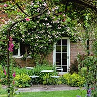 View down long metal pergola covered in roses frames patio with table, chairs, mint and alchemilla. On wall, climbing Rosa Dentelle de Malines.