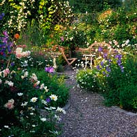 Roses, lavender, oregano, verbena, campanula, daisy, geranium and astrantia fill this garden with scent and colour in June.