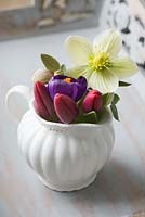 Spring flowers in milk jug - Helleborus x ericsmithii 'Monte Cristo' - Gold Collection, Crocus 'Flower Record' and red tulips