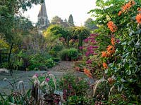 An autumn gravel garden with large informal borders of perennials and grasses with yew and box structure. In the foreground orange cactus Dahlia, pink Salvia 'Bethelii', Pennisetum Rubrum and containers of scented pelargonium.