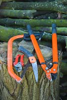 Tools for pruning trees and shrubs. Bow saw, secateurs, folding pruning saw, long handled pruners