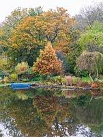 Boat moored on lake near bank - autumn coloured leaves on trees