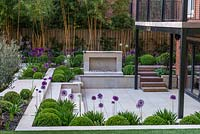 Town garden designed by Kate Gould. Box balls interplanted with purple and white allium. Sunken terrace has open fire place. On far boundary fence, hostas rest beneath tall golden bamboo.