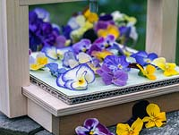 Perennial violas make lovely pressed flowers.