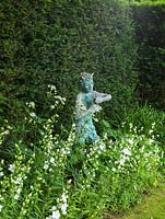 Statue rests in shady border of white corydalis, campanula, astrantia and viola, offset against a dark yew hedge.