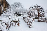 Rural garden with hedges and a clipped arbour in winter