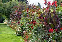 The red border at Weihenstephan Trial Garden with planting of Dahlia 'Spartakus', Canna indica 'Schwabenstolz', Lobelia fulgens 'Queen Victoria', Miscanthus sinensis, Penstemon, Ricinus communis 'Carmencita Red', Zinnia 'Profusion F1 Fire' and Zinnia elegans 'Scarlet Flame'
