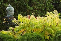Close-up of buddha head sculpture and Rhus typhina 'Tiger Eyes' - Sumac shrub in Japanese garden