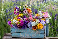 Box of freshly cut flowers, arranged in posies, to include marigold, cosmos, larkspur, ammi, sweet peas, clary sage, scabious, sweet William, achillea, nicotiana, cornflower, godetia, feverfew, zinnia and statice.